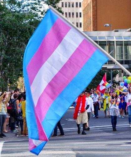 trans portugal bloco de esquerda projecto de lei direitos transfobia