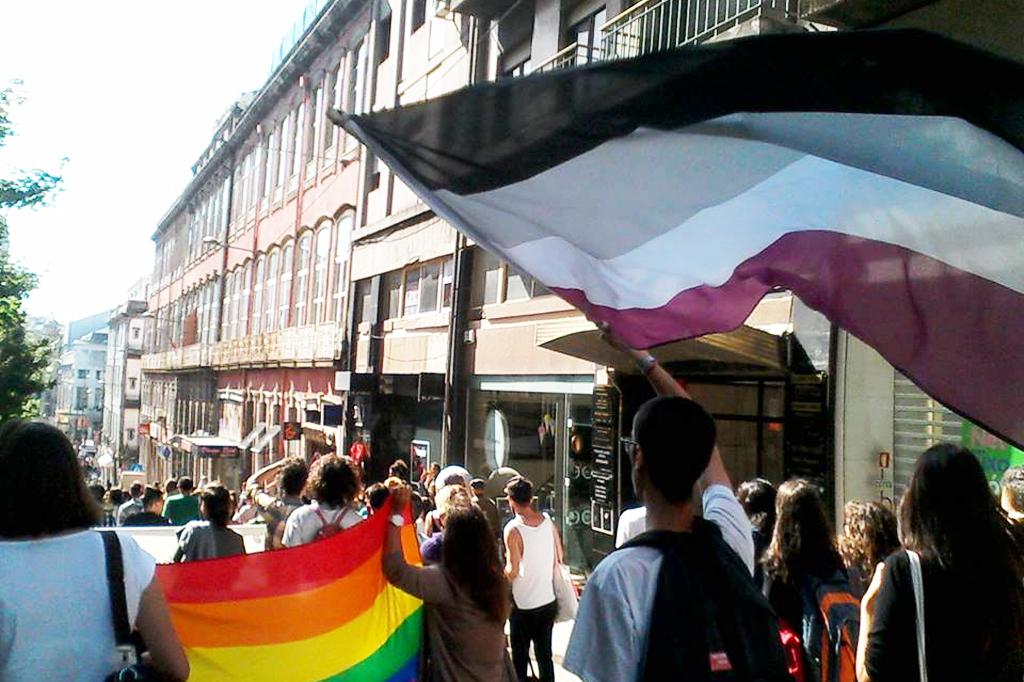 bandeira-assexualidade-lgbta-escrever-gay-portugal