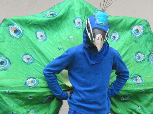 peacock-man